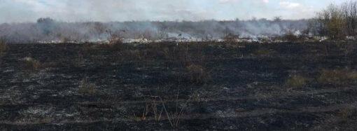 Сгорел вместе с мусором: в Одесской области мужчина жег траву с листьями и угодил в реанимацию